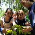 Escolares identificaron especies nativas en la UdeC