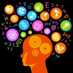 Neurociencias y su importancia en contextos de aprendizaje