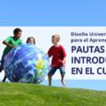Diseño Universal para el Aprendizaje (DUA): Pautas para su introducción en el currículo