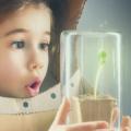 La Enseñanza De Las Ciencias Naturales En La Educación Básica
