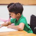 Estrategias y prácticas en las aulas inclusivas